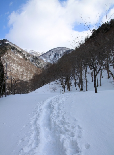 20120408shiragamon-003.jpg